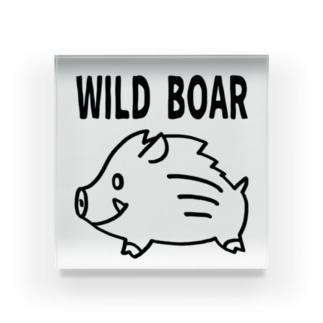 「WILD BOAR」(黒線) Acrylic Block