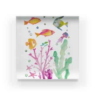 つれづれ魚 Acrylic Block