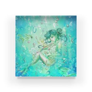 シュノーケリング-Ⅰ Acrylic Block