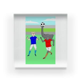 ボールを運ぶゾウ アクリルブロック