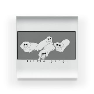 不良犬- little gang dogs- Acrylic Block