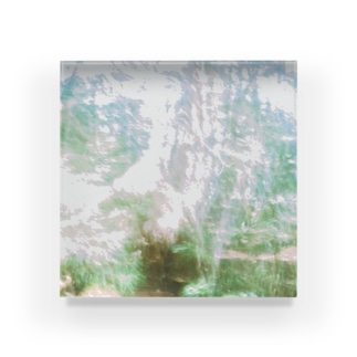 forest Acrylic Block