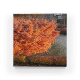 紅葉と朝焼けの掛け算 Acrylic Block