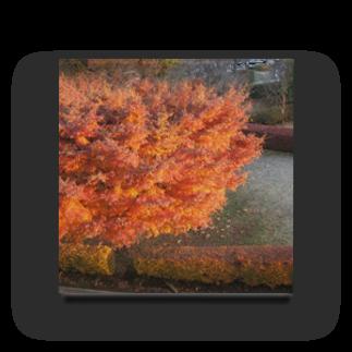 mokiaの紅葉と朝焼けの掛け算 Acrylic Block