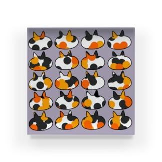 三毛猫 Acrylic Block