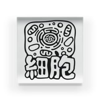 細胞 Acrylic Block