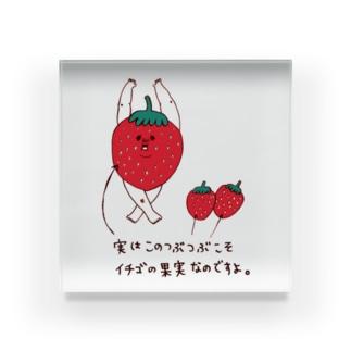 いちごの雑学 Acrylic Block