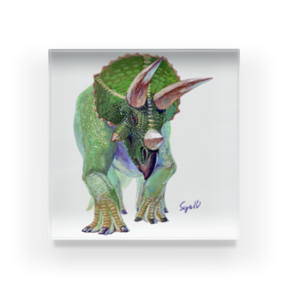 segasworksのTriceratops Acrylic Block