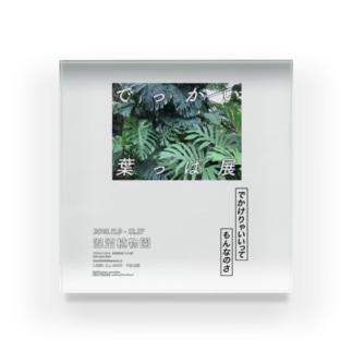 架空の植物園の架空の展示の架空のポスター Acrylic Block