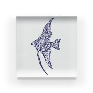 天使魚 Acrylic Block