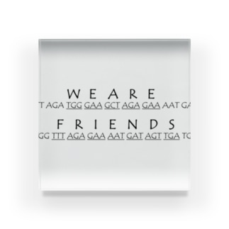 We Are Friends Acrylic Block