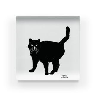 黒猫 / Black Cat  Acrylic Block