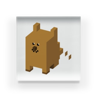 BOX DOG Acrylic Block