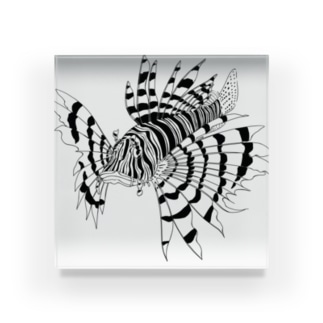 ミノカサゴ〈モノクロ水族館〉 Acrylic Block