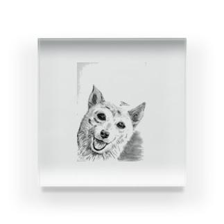 鉛筆画のワンちゃん Acrylic Block