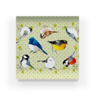 可愛い野鳥たち Acrylic Block