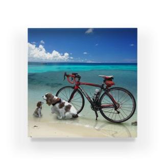 自転車で アクリルブロック