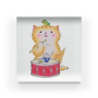 ドラムのスネア猫 Acrylic Block