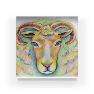 She is sheep. Acrylic Block