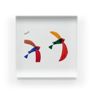 彩鳥 Acrylic Block