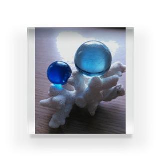 マーリン&ドリー Acrylic Block