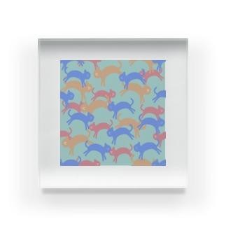 いろいろ猫達🐱 Acrylic Block