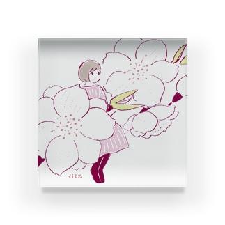 桃の花 Acrylic Block