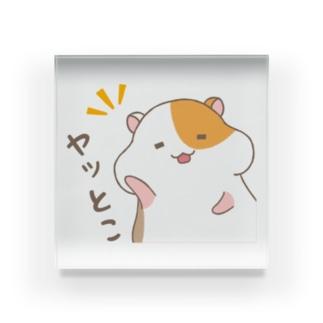 ヤッとけ・ハム太 Acrylic Block