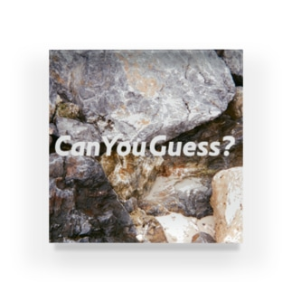 Can You Guess? Acrylic Block