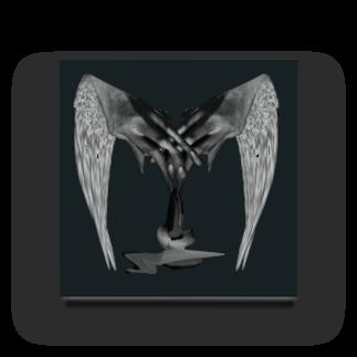 KAREZUのblack wing Acrylic Block