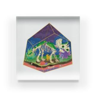 トリケラトプス Acrylic Block