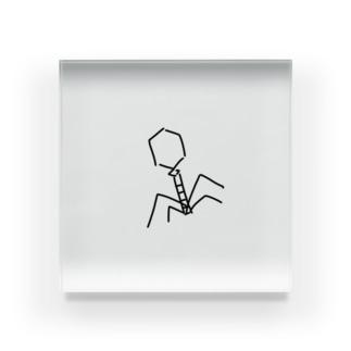 ファージ Acrylic Block