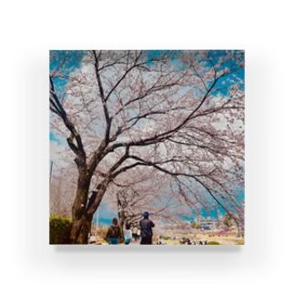 満開の春 Acrylic Block