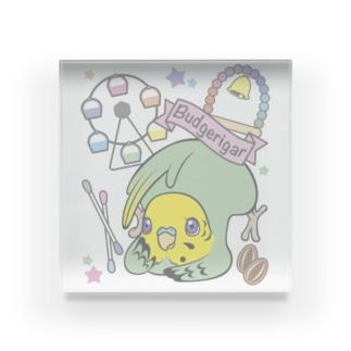 夢みるインコ Acrylic Block