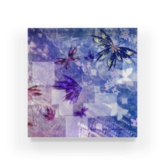 乱視-蝶- Acrylic Block