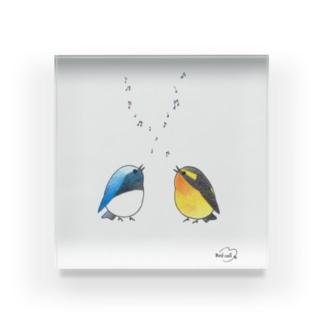 -ORURI and KIBITAKI- Bird call Acrylic Block