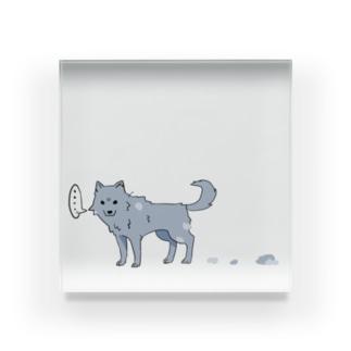 換毛期の犬 Acrylic Block