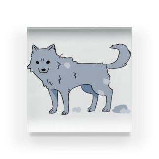 換毛期の犬ver2 Acrylic Block