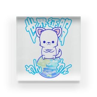 世界征服わんわん!(チワワ) Acrylic Block