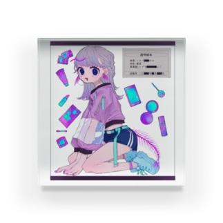 透明標本ショウジョ Acrylic Block