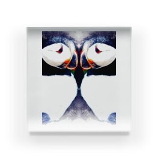 Wパフィン Acrylic Block