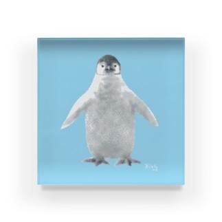 ペンギンの赤ちゃん Acrylic Block
