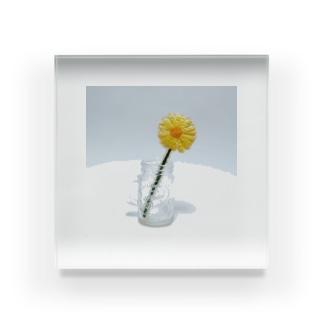 刺繍で作った黄色いお花 Acrylic Block
