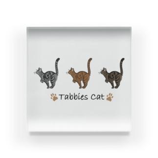 Tabbies Cat(クラシック) Acrylic Block