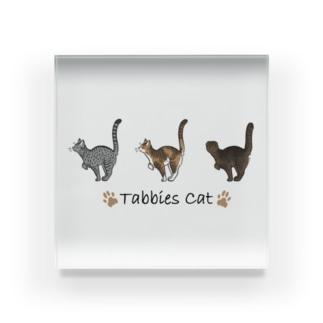 Tabbies Cat(タビー系) Acrylic Block
