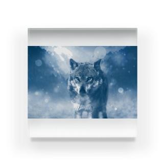 ウルフカット Acrylic Block