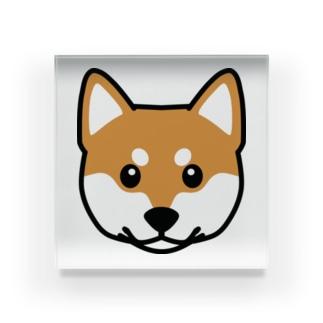 柴犬 Acrylic Block