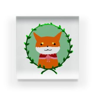 柴犬の少女(赤柴) Acrylic Block