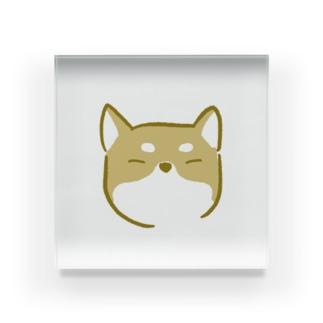 豆柴犬 Acrylic Block