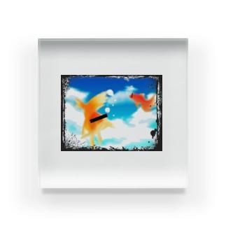 広い水槽 Acrylic Block
